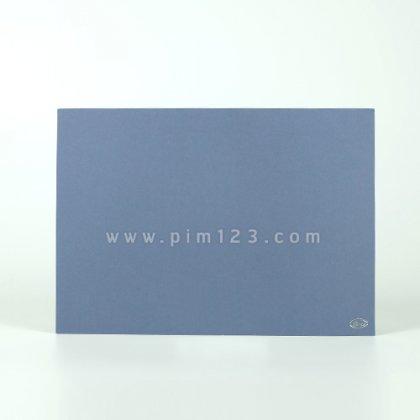 VIP-49-21-3